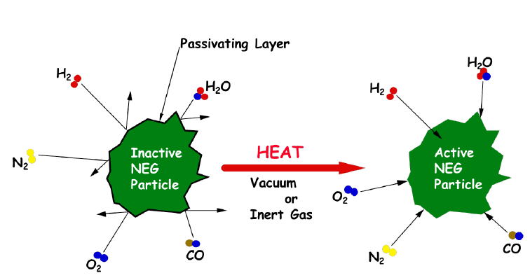 Schematic NEG activation process